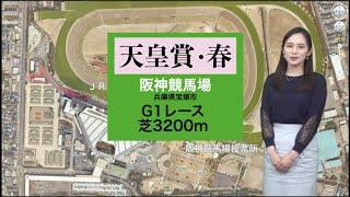 天皇賞・春 馬場状態は? 阪神競馬場のピンポイント天気