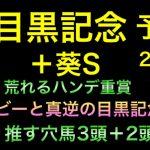 【競馬予想】 目黒記念 2021 予想 葵ステークス