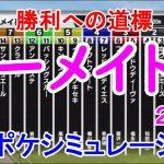 マーメイドステークス2021 枠順確定後シミュレーション 【スタポケ】【競馬予想】