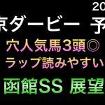 【競馬予想】 南関東重賞 東京ダービー 2021 予想 函館スプリントステークス 展望 函館SS