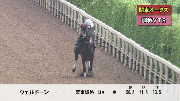 【川崎競馬】関東オークス(2021)調教VTR