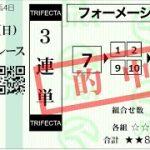 総額84万7000円大的中!【競馬】宝塚記念 2021 ソフトさんの勝負馬券配信!