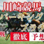 A2【 地方競馬予想 】6/17 川崎競馬予想 11R スパーキングプラチナ(A2)