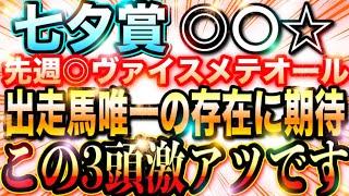 【七夕賞】夏競馬『絶好調』激熱3頭について話します。【先週◎ヴァイスメテオール1着!】