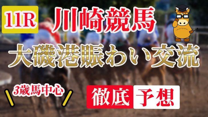 【 地方競馬予想 】7/9  川崎競馬予想 11R 大磯港賑わい交流(B3)