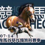賽馬直播 競馬Fact Check 2021-07-14 LIVE直播九場HKJC香港賽馬會快活谷草地夜馬 即場貼士 AI模擬賽果 排隊馬 #賽馬FactCheck LIVE