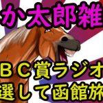 みか太郎の中央競馬雑談LIVE G3レース頑張る編あと全レース シャーーー??(まず概要欄をご確認してください)