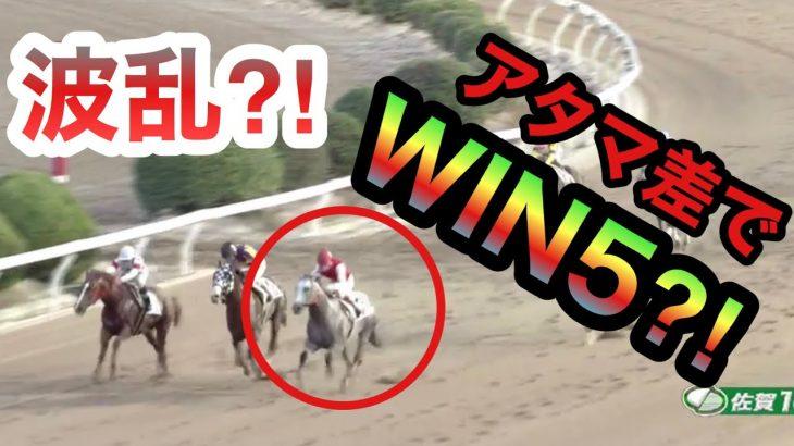 【競馬】波乱⁈アタマ差でWIN5⁈果たして結果は?七夕賞 プロキオンS