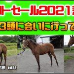 【競馬・馬主】セレクトセール2021落札等 0歳馬3頭に会いに行ってきた‼️いい馬みつけ旅(Vol088)
