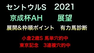 【競馬予想】 セントウルステークス 京成杯オータムハンデ 2021 事前予想 有力馬診断など