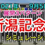 【競馬】新潟記念2021 シミュレーション《展開3パターン》