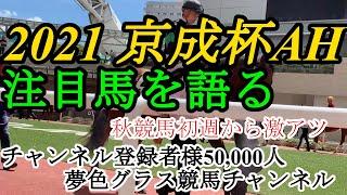 【注目馬を語る・展望】2021京成杯オータムハンデ!秋競馬開幕から激アツのメンバー揃う!
