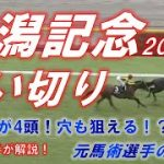 新潟記念2021 追い切り診断!! 穴馬も含めて80点馬が4頭! 元馬術選手のコラム【競馬】