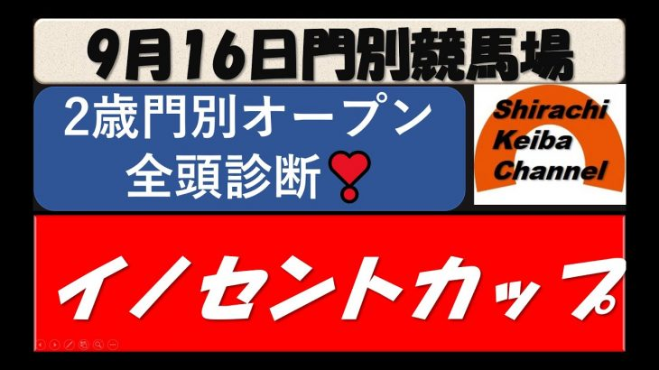 【競馬予想】イノセントカップ2021年9月16日 門別競馬場