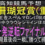 【2021年9月20日 高知競馬予想】上半期最終開催 重賞珊瑚冠賞に王者スペルマロン出陣!