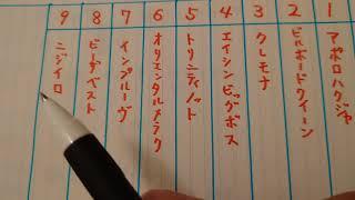 9月9日 園田競馬 考察・下調べ(園田オータムトロフィー)