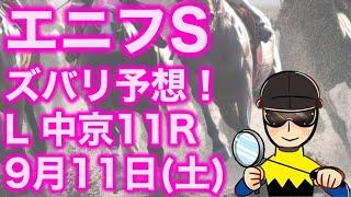 【投資競馬塾】エニフステークス(L)中京11R★ズバリ予想!★令和3年9月11日(土)