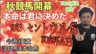 【競馬予想】紫苑S・京成杯AH・セントウルS
