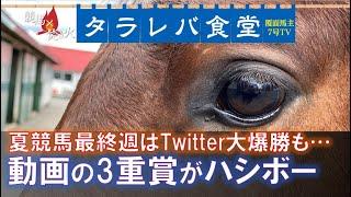 【タラレバ競馬回顧】夏の終わりはYouTube大惨敗、Twitter大爆勝というチグハグ感…