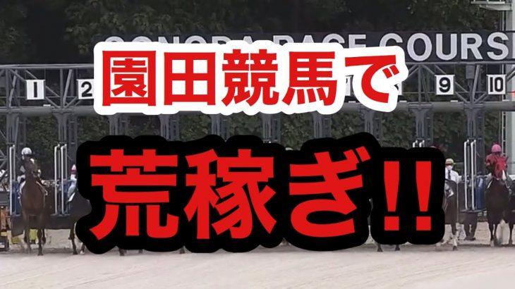 【大儲け】園田競馬で荒稼ぎ!園田競馬に挑んでみた結果!