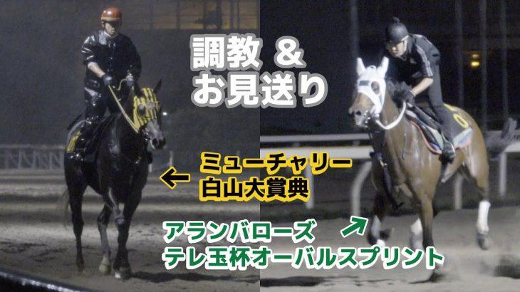 【船橋競馬】アランバローズ&ミューチャリー 追い切り ミューチャリーお見送り
