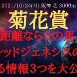 菊花賞 2021 友道厩舎の期待馬・レッドジェネシスの買える情報を3つ公開!【中央競馬重賞予想】
