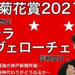 【菊花賞2021】一番人気想定ステラヴェローチェの信頼度!オーソクレース、レッドジェネシスらの逆転は?【競馬予想】