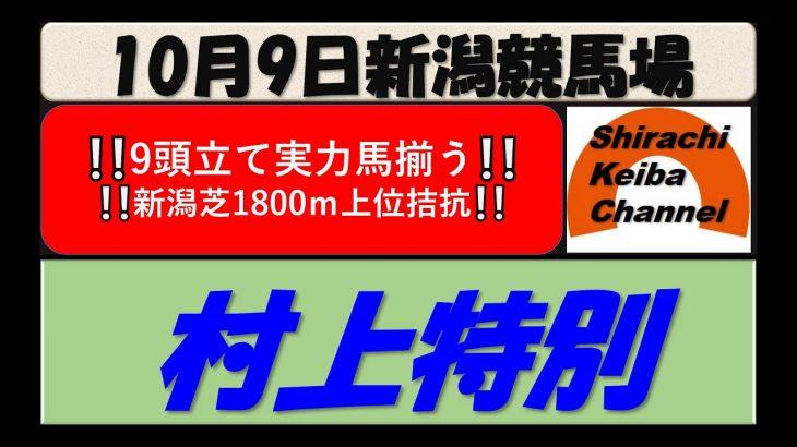 【競馬予想】村上特別 2021年10月9日 新潟競馬場