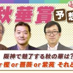 【秋華賞 2021予想】桜花賞馬VSオークス馬!!他勢力の動向は??