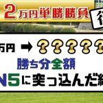 【競馬】全24Rレース単勝一点買いで勝負!勝ち分をWIN5に全ツッパ!!(後編)
