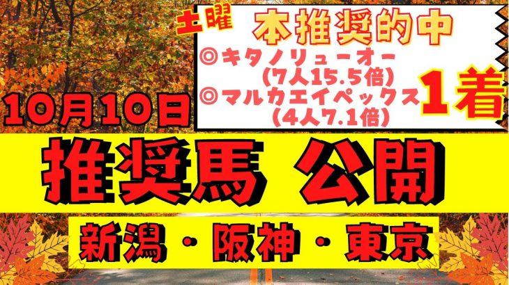 【週間競馬予想TV】2021年10月10日(日) 中央競馬全レースの中から推奨馬を紹介。新潟・阪神・東京の平場、特別戦、重賞レース。今週デビューの注目新馬も紹介!注目馬を考察。【全レース】