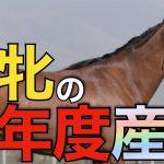 【有望株】今年産まれた名牝たちの産駒を探る!モーリス×リスグラシュー初仔は牡馬が誕生。【競馬】