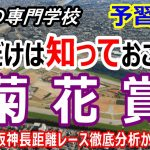 【競馬】菊花賞予習動画 初心者にも分かり易く血統を分析【競馬の専門学校】